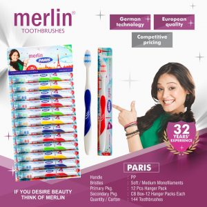 Merlin_Paris